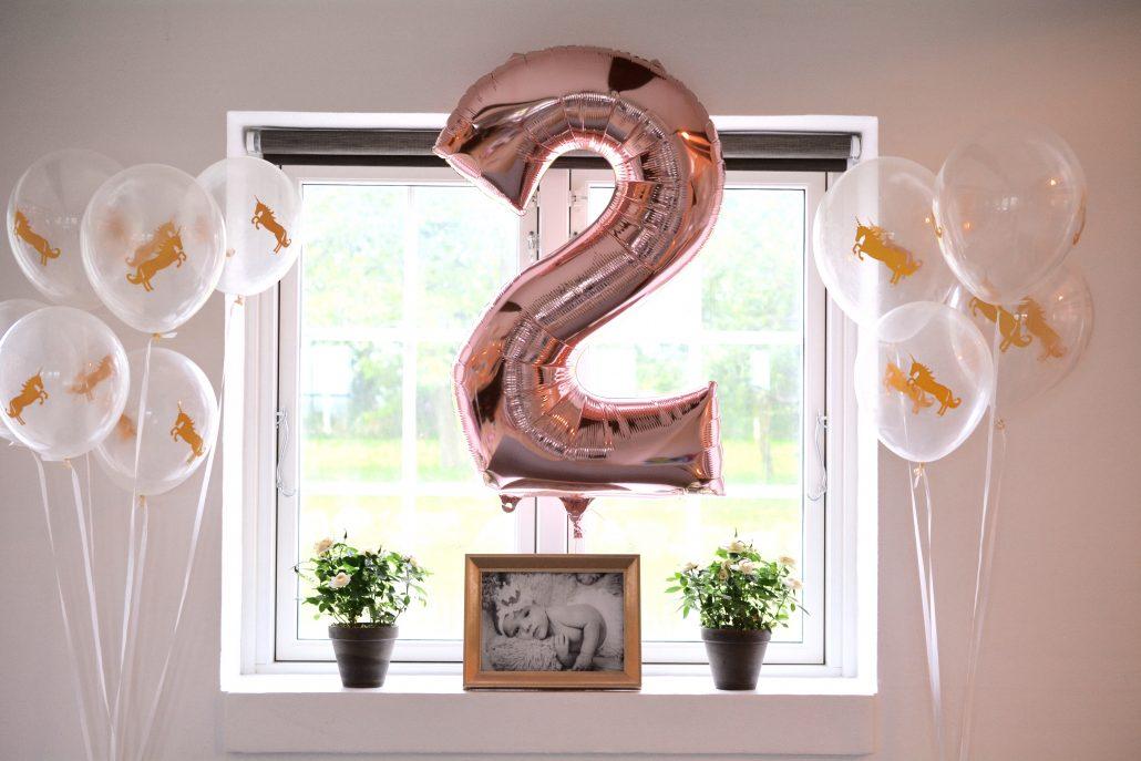 fødselsdag 2 år