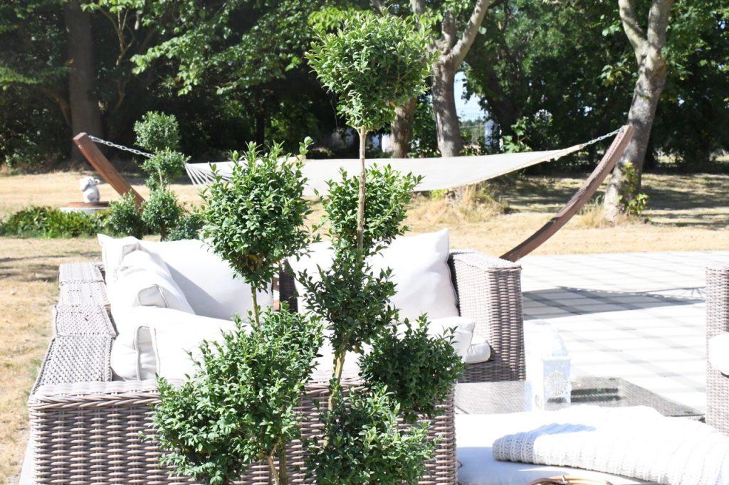 terrasse træer