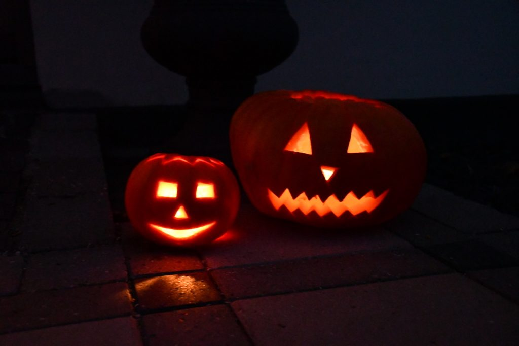 happy halloween græskar sjov