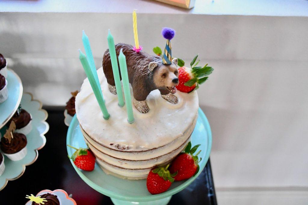 5 års fødselsdag fødselsdagsfest 4