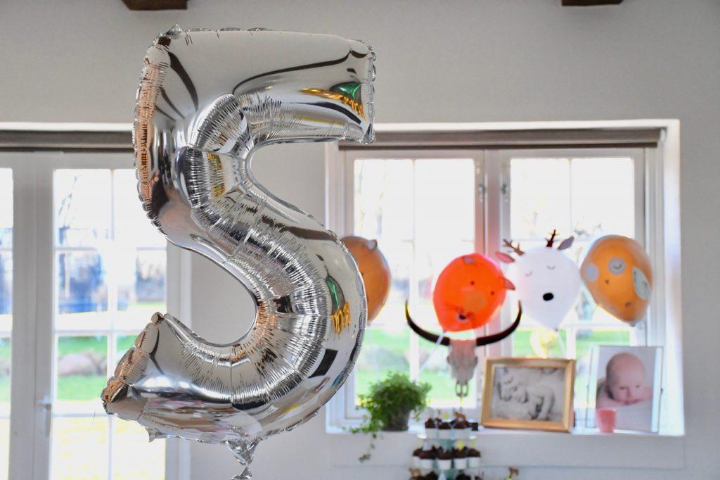 5 års fødselsdag romeo