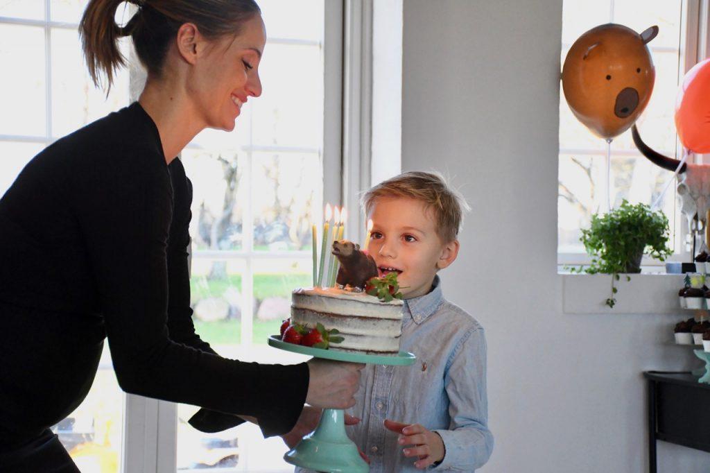 5 års fødselsdag fødselsdagsfest
