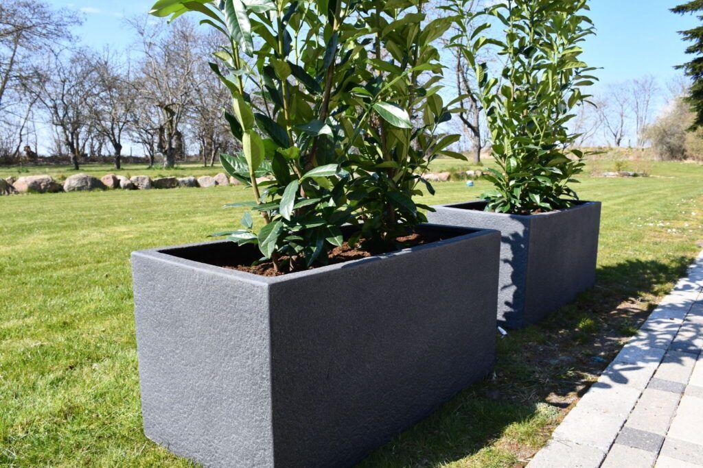 anchers havecenter terrasse beplantning 8