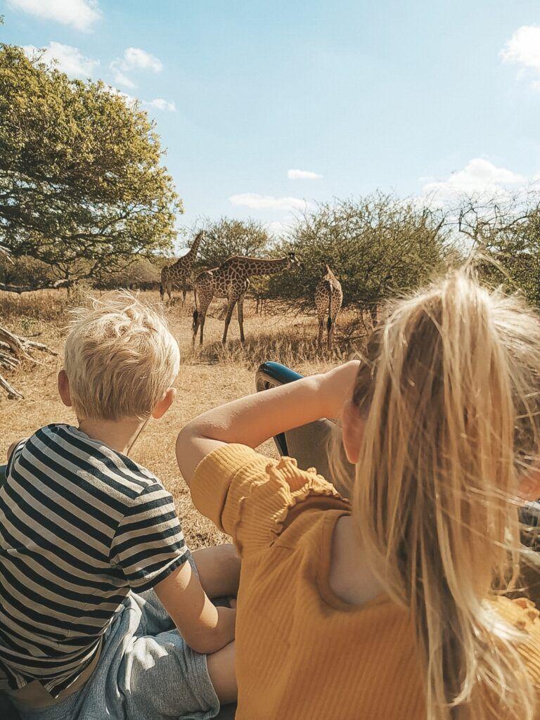 Afrika rejse sydafrika 16