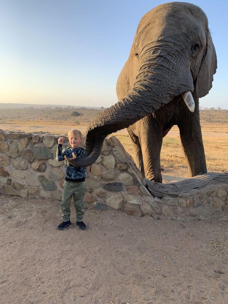 Afrika rejse sydafrika 3