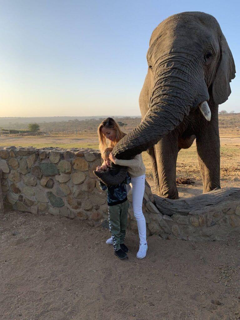 Afrika rejse sydafrika 2
