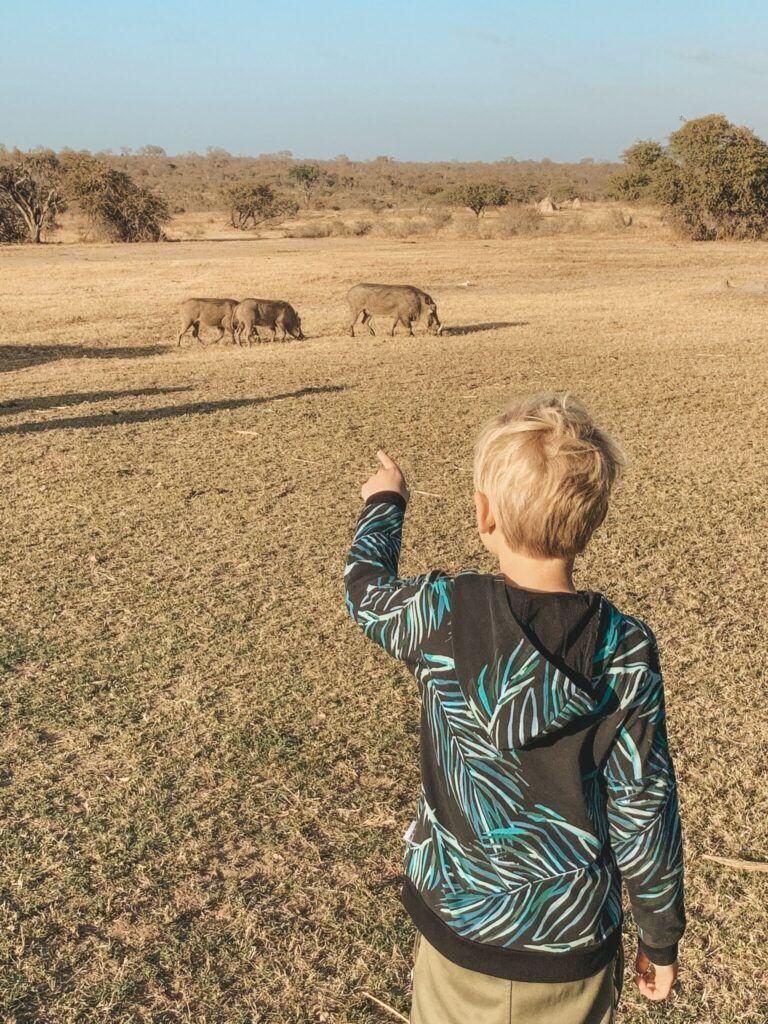 Afrika rejse sydafrika 18