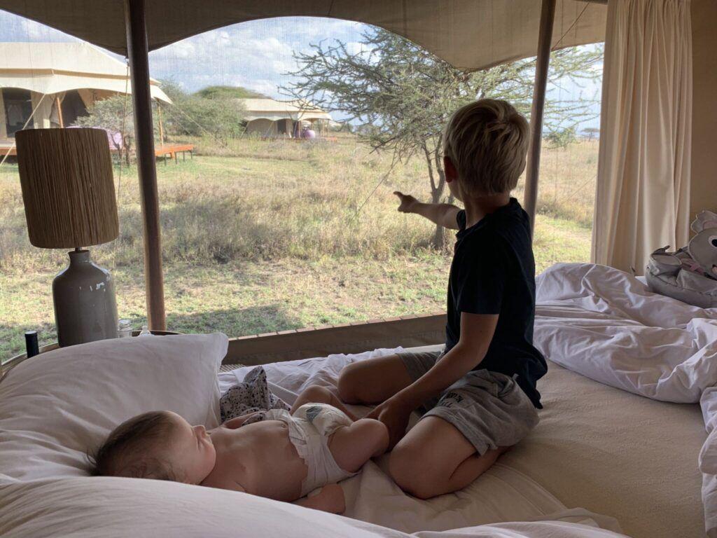 Afrika teltlejr tanzania