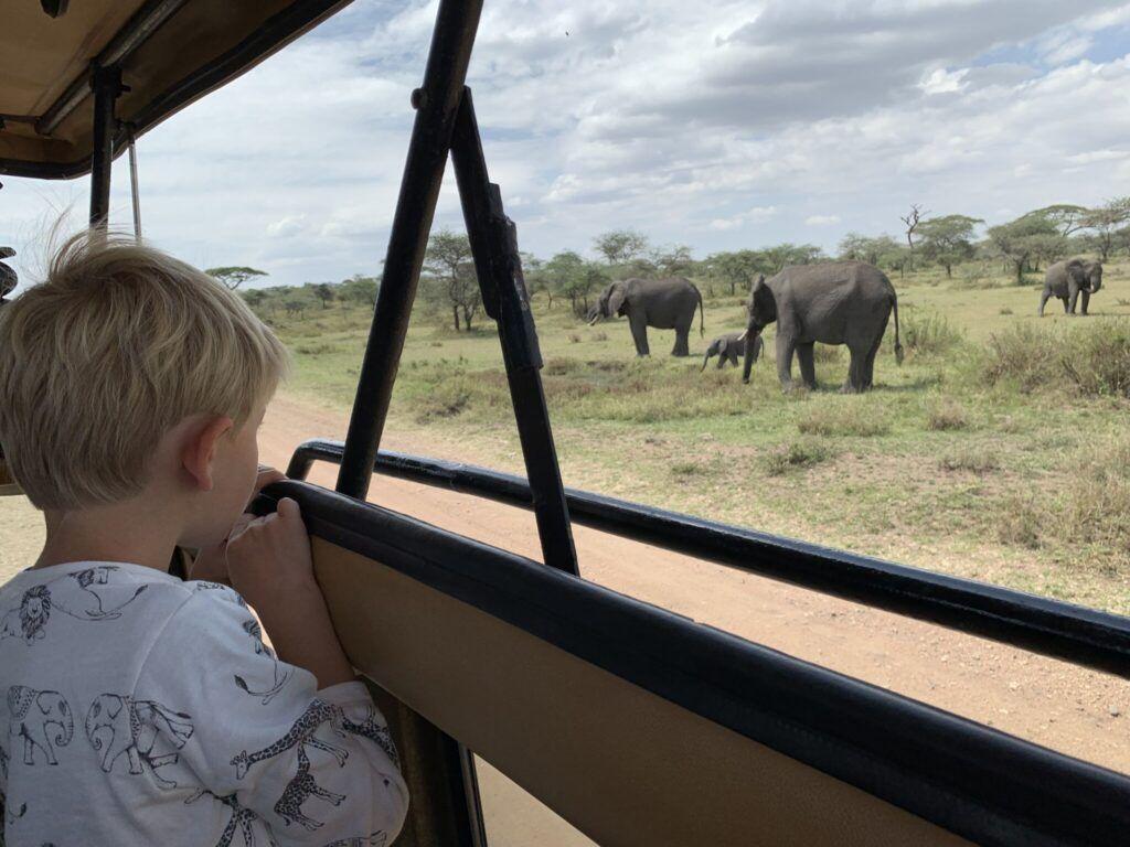 Afrika teltlejr safari elefanter 1