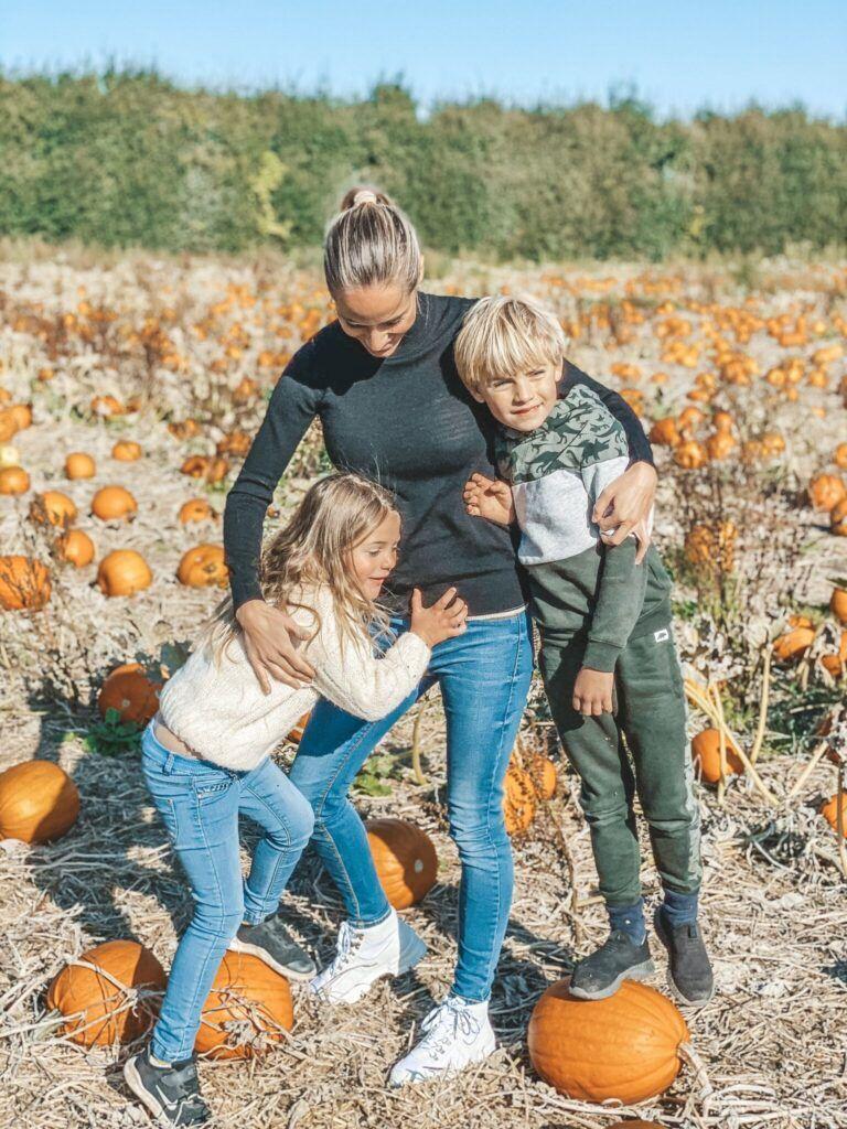 efterår, græskar, halloween 10