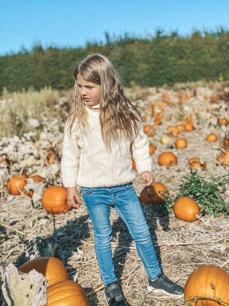 efterår, græskar, halloween 9