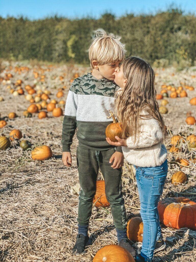 efterår, græskar, halloween 4