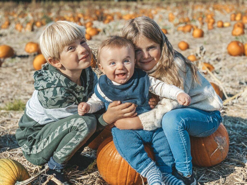 efterår, græskar, halloween 3