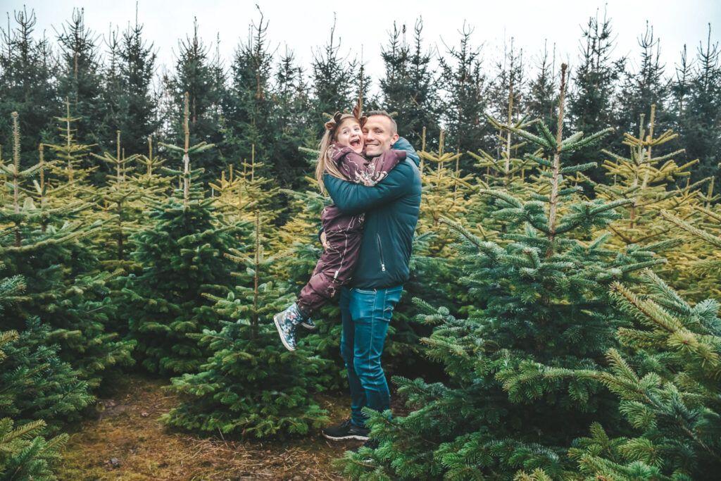 juletræ, jul, årets juletræ 7